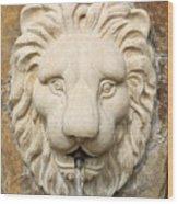 Lion Head Fountain Wood Print