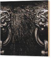 Lion Head Handle Wood Print