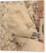 Lion Head In Venice Wood Print