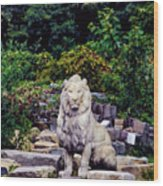 Lion In A Concrete Jungle Wood Print