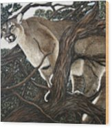 Lion In The Tree Wood Print