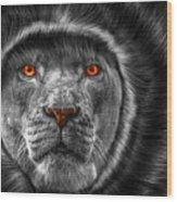Lion Lady   -3 Wood Print