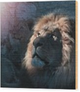 Lion Light Wood Print by Bill Stephens