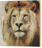 Lion Majesty Wood Print