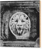 Lion Of Rome Wood Print