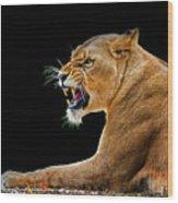Lion On Black Wood Print