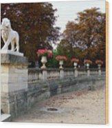 Lion Sculptue Luxembourg Garden Paris France Wood Print