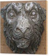 Lion Wood Print by Vladimir Kozma