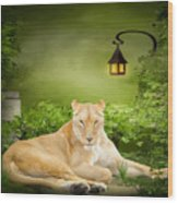 Lioness Dream Wood Print