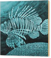 Lionfish On Blue Wood Print
