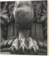 Lions Claw Wood Print