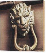 Lion's Den Wood Print