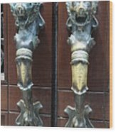 Lions Doorhandle Wood Print