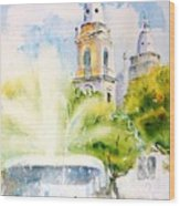 Lions Fountain Plaza Las Delicias  Ponce Cathedral Puerto Rico Wood Print