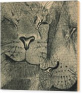 Lions In Love Wood Print