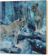 Lions Of The Mist Wood Print