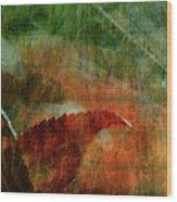 Liquid Amber Wood Print