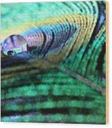 Liquid Color Wood Print
