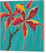 Liquidia Plumeria Wood Print