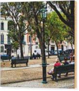 Lisbon High Park Wood Print
