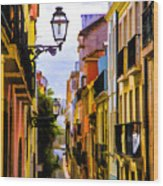 Lisbon Hills Wood Print