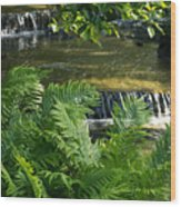 Listen To The Babbling Brook - Green Summer Zen Wood Print