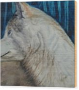 Listening Coyote Wood Print
