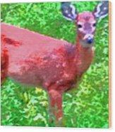 Listening Deer Wood Print