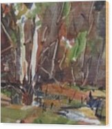 Listton Creek Wood Print