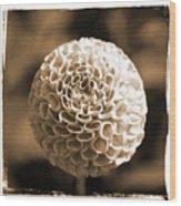 Lith Flower Wood Print
