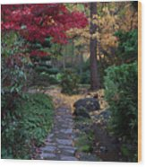 Litha Park Ashland Oregon Wood Print