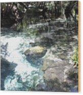 Lithia Springs Wood Print