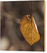 Little Autumn Leaf Wood Print