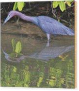 Little Blue Fishing Wood Print