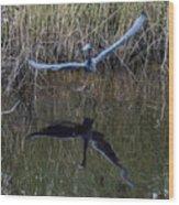 Little Blue Heron Flying From Marsh Wood Print