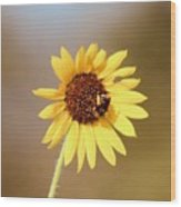 Little Bumble Bee Wood Print