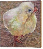 Little Chick Wood Print