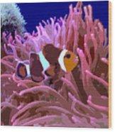 Little Clown Fish Wood Print