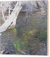 Little Colorado River South Fork Wood Print