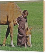 Little Country Girl Wood Print
