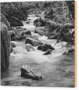 Little Creek 3 Bw Wood Print