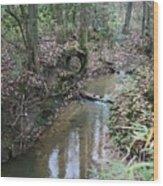 Little Creek Wood Print
