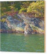 Little Diamond Island Springtime Wood Print