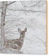 Little Doe In Snow Wood Print