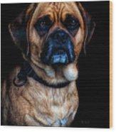Little Dog Big Heart Wood Print