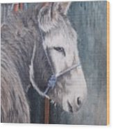 Little Donkey-glin Fair Wood Print