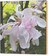 Little English Flower Wood Print