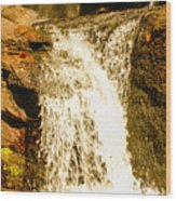 Little Falls Wood Print