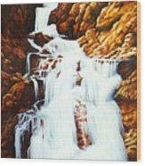 Little Firehole Falls Wood Print