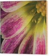 Little Flower Quadrant Wood Print
